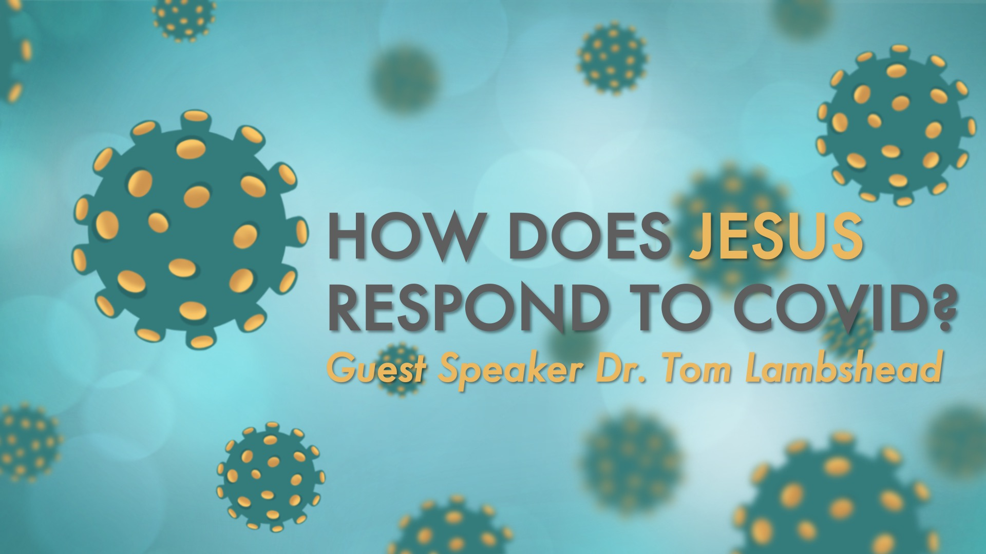 How Would Jesus Respond to Covid?